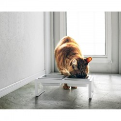 Pet Food Bowl with Tall...