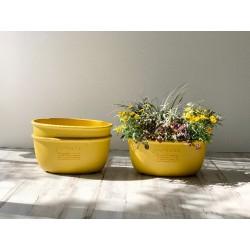 Ideale per piantare gruppi di piante e creare giardini domestici con un effetto tridimensionale