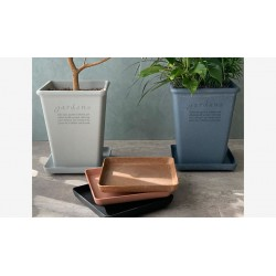 Eco-Friendly Square Plate...